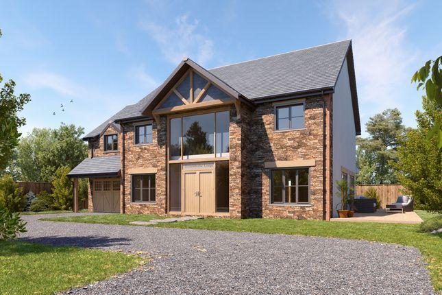 Thumbnail Detached house for sale in Trehemborne, St Merryn