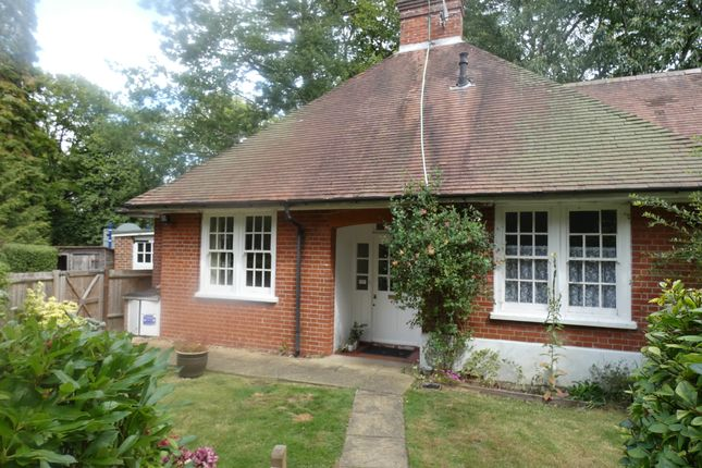 Thumbnail Bungalow to rent in Victoria Hill Road, Fleet, Hampshire