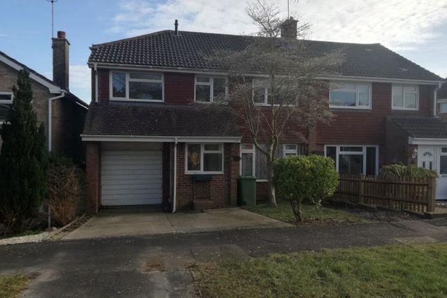 Thumbnail Semi-detached house to rent in Bennet Close, Alton