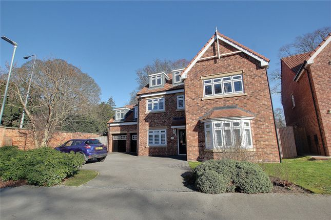Thumbnail Detached house to rent in Cleminson Gardens, Cottingham, East Yorkshire