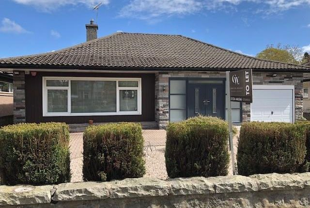 Thumbnail Bungalow to rent in Anderson Drive, Aberdeen