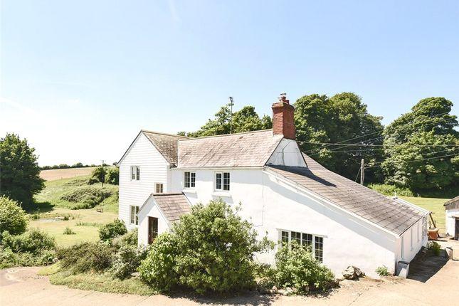 Thumbnail Farm for sale in Beaminster, Dorset