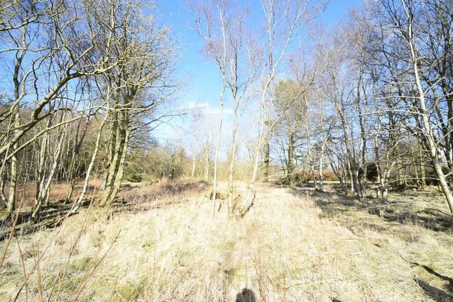 Thumbnail Land for sale in Plot With Planning Permission, Millrig Road, Wiston By Biggar