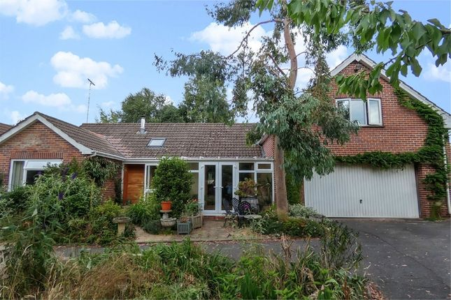 Thumbnail Semi-detached bungalow for sale in Slade Road, Ottery St Mary, Devon