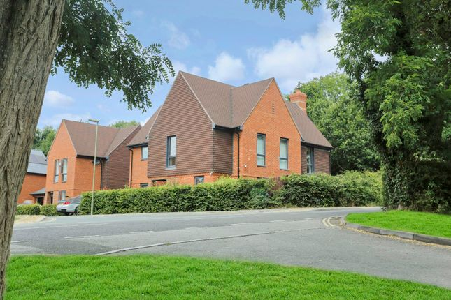 Detached house for sale in Brook Close, Swanmore, Southampton