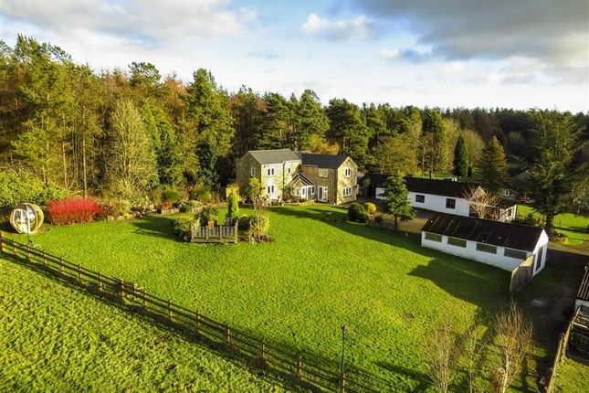 Thumbnail Farmhouse for sale in Nursery Farm Cottage, Sydnope Hill, Darley Moor Matlock, Derbyshire