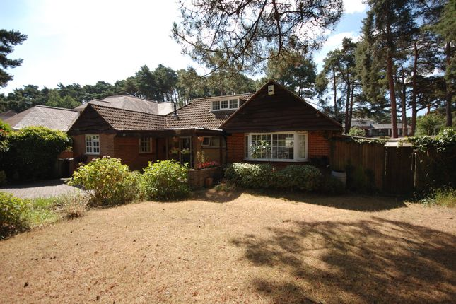 Thumbnail Detached bungalow for sale in Links Road, Poole