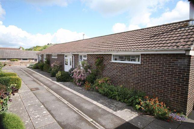 Thumbnail Semi-detached bungalow to rent in Abbots Walk, Cerne Abbas