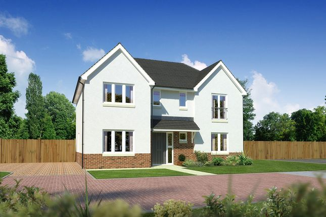 "Thumbnail Detached house for sale in ""Laurieston"" at Drum Farm Lane, Bo'ness"