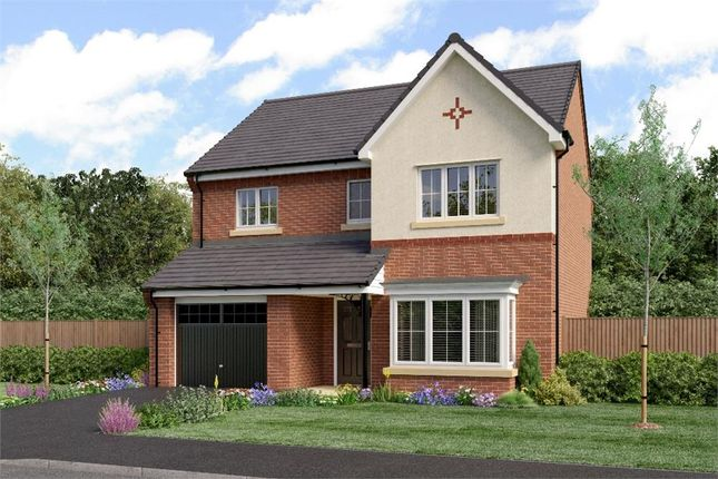 """4 bedroom detached house for sale in """"The Ashbery"""" at Sadberge Road, Middleton St. George, Darlington"""