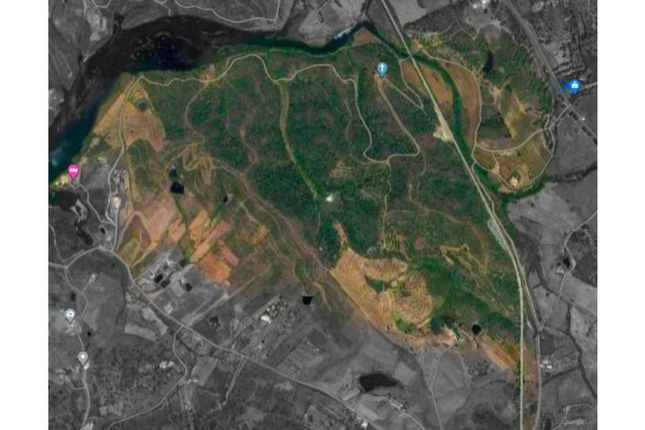 Thumbnail Land for sale in Silves, Silves, Faro