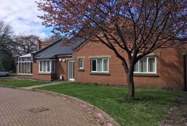 Thumbnail Detached bungalow to rent in Morpeth, Northumberland