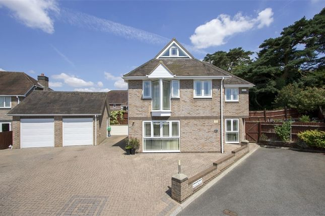 Thumbnail Detached house for sale in Marian Close, Corfe Mullen, Wimborne, Dorset