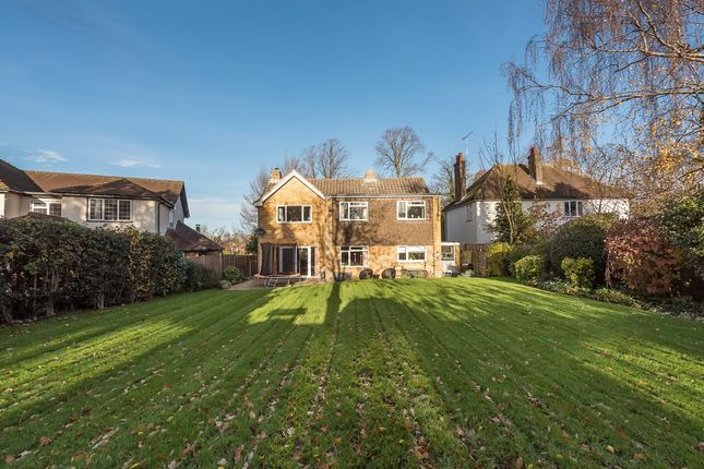 Thumbnail Detached house to rent in Roundwood Lane, Harpenden