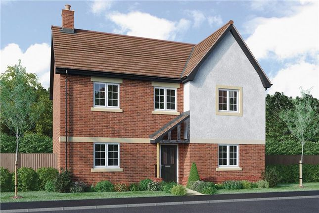 "Thumbnail Detached house for sale in ""Breedon"" at Radbourne, Ashbourne"