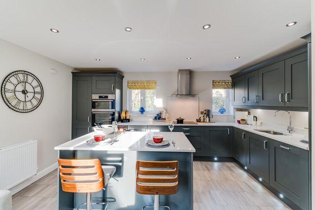 "Thumbnail Detached house for sale in ""Alderney"" at Langaton Lane, Pinhoe, Exeter"