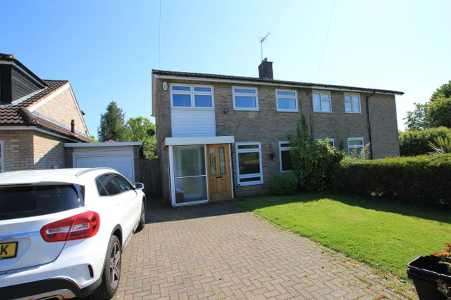 Thumbnail Semi-detached house to rent in Hydean Way, Stevenage