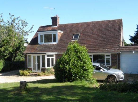 Thumbnail Bungalow to rent in Cottage, West Marden, Chichester
