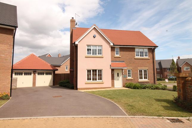 Thumbnail Detached house for sale in St Olave Close, Daventry
