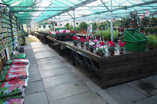 Thumbnail Commercial property for sale in Garden Centre & Horticulture LA11, Flookburgh, Cumbria