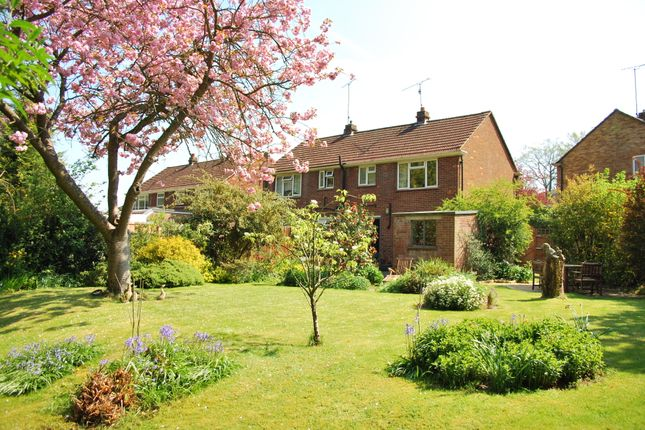 Thumbnail Semi-detached house to rent in Fox Road, Lower Bourne, Farnham