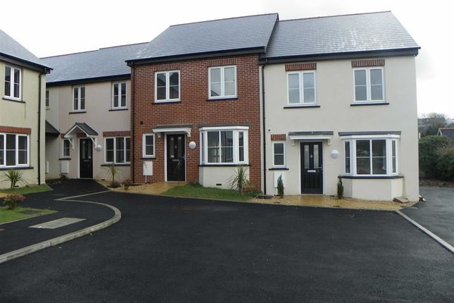 Thumbnail Terraced house for sale in Ashdale Mews, Ashdale Lane, Pembroke