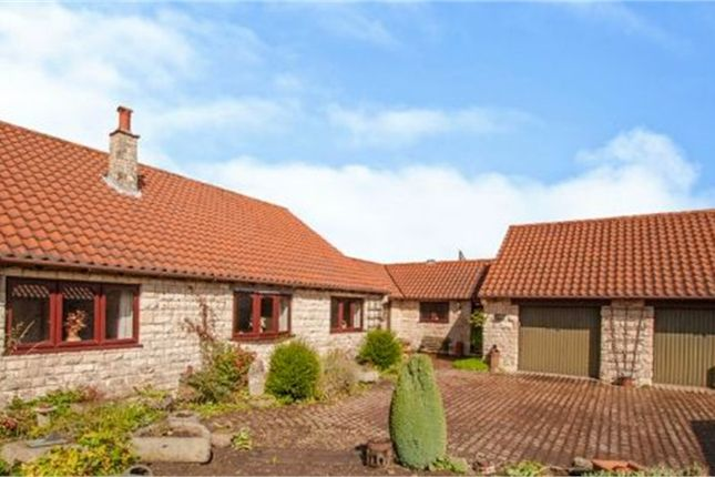 Thumbnail Detached bungalow for sale in Back Lane, Clifton, Rotherham