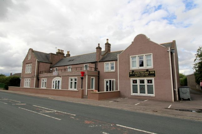 Thumbnail Hotel/guest house for sale in St. Cyrus Village Inn, Main Road, St. Cyrus, Montrose