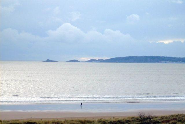 Thumbnail Flat to rent in Ocean Crescent, Marina, Swansea