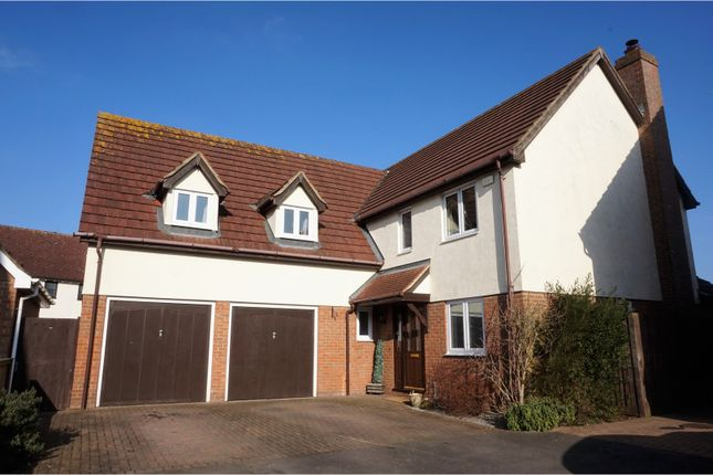 Thumbnail Detached house for sale in Salmons Close, Dunmow