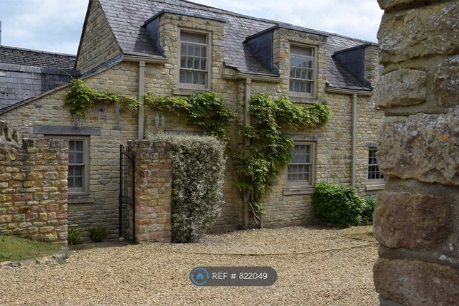 Thumbnail Semi-detached house to rent in Off Drummingwell Lane, Oundle