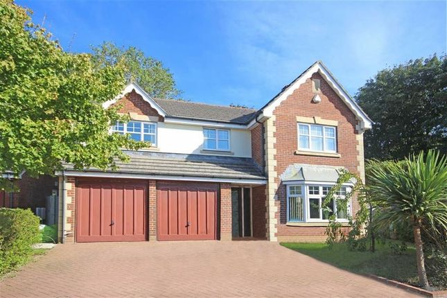 Thumbnail Detached house for sale in Penn Meadows Close, Brixham