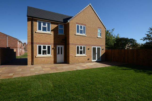Thumbnail Detached house to rent in Holdich Street, Peterborough, Peterborough