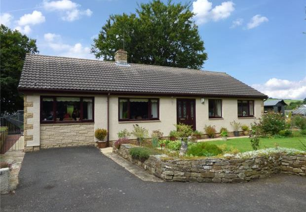 Thumbnail Detached bungalow for sale in Beech Grove, Gilsland, Brampton, Northumberland