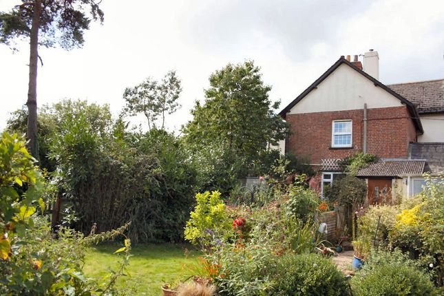 Thumbnail Flat for sale in Talaton, Exeter
