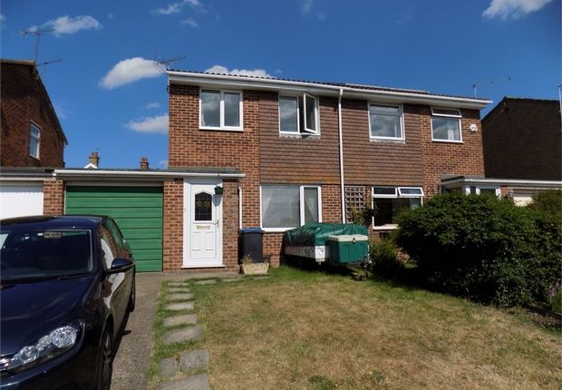 Thumbnail Semi-detached house to rent in Sewell Close, Birchington