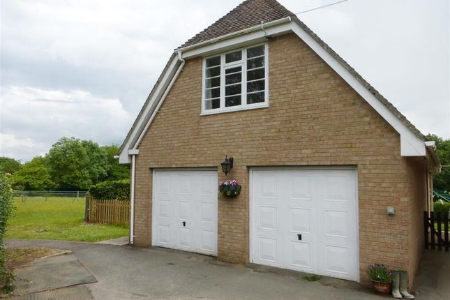 Thumbnail Flat to rent in North Perrott, Crewkerne
