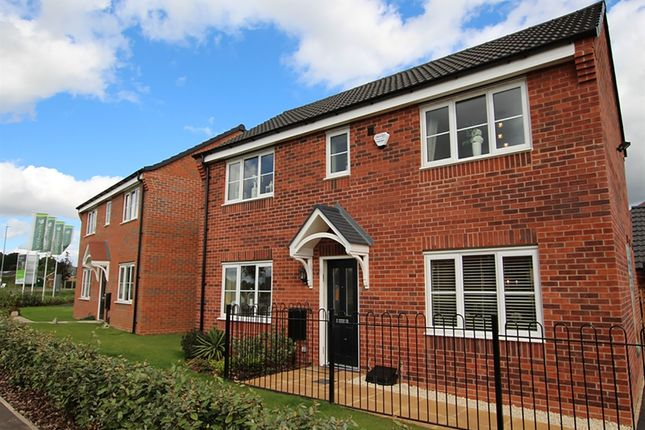 "Thumbnail Detached house for sale in ""The Clayton"" at Badger Close, Fleckney, Leicester"