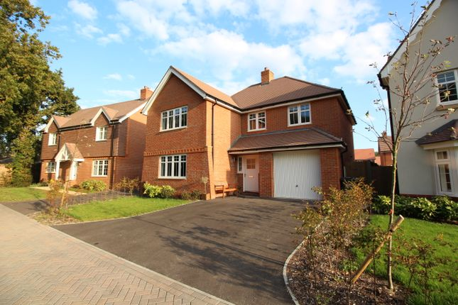 Thumbnail Detached house for sale in West Brook View, Emsworth