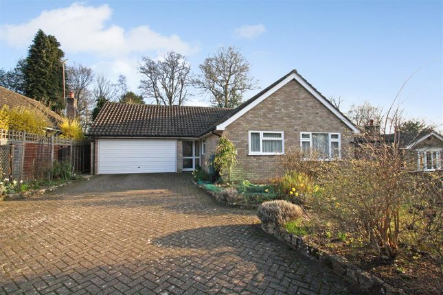 4 bed detached bungalow for sale in Limes Close, Bramshott, Liphook GU30