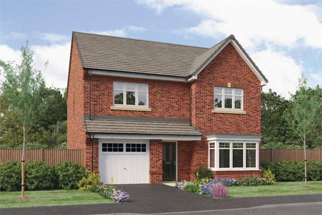 """Thumbnail Detached house for sale in """"Ryton"""" at Ruby Lane, Mosborough, Sheffield"""
