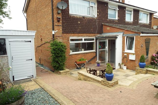 Thumbnail Semi-detached house to rent in North Road, Lincoln