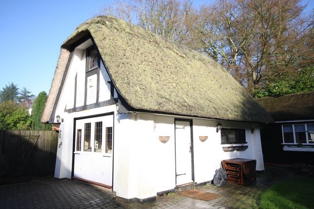 Thumbnail Detached house to rent in Salisbury Road, Shootash, Romsey
