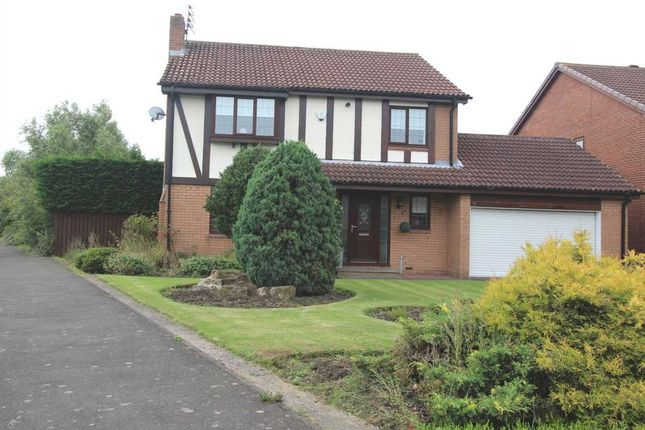 Thumbnail Detached house for sale in Sandford Avenue, Northburn Lea, Cramlington