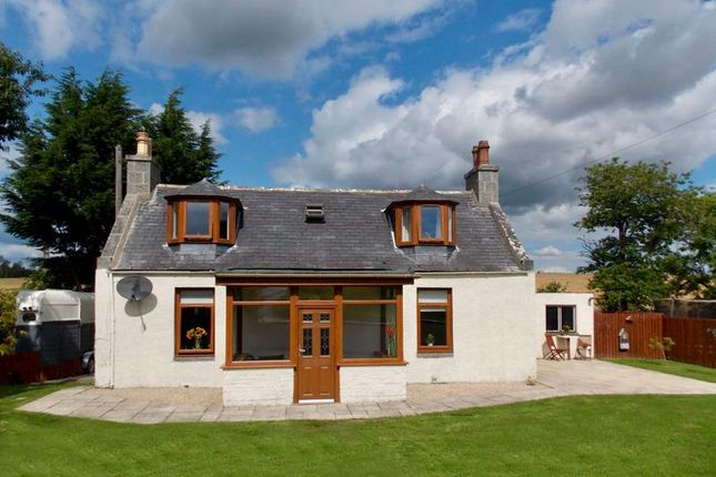 Thumbnail Cottage for sale in Bridge Of Alford, Alford