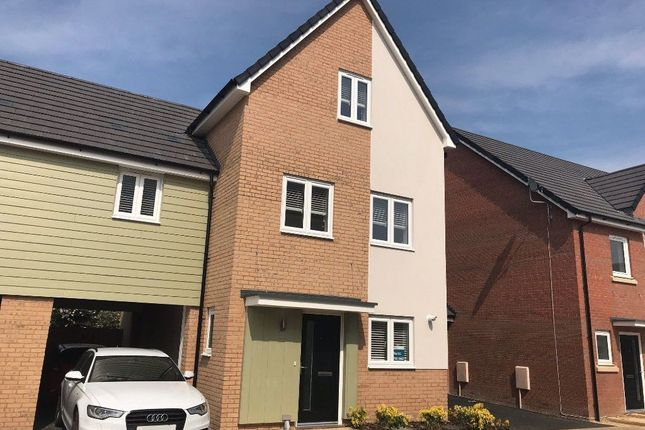 Thumbnail Property to rent in Thorpe Road, Peterborough
