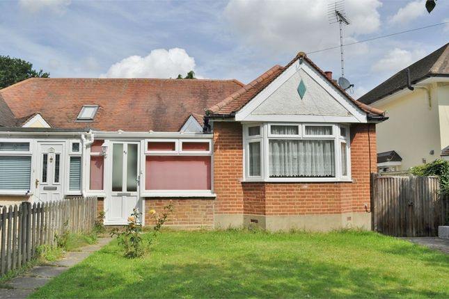 Thumbnail Semi-detached bungalow to rent in Fourth Avenue, Chelmsford, Essex