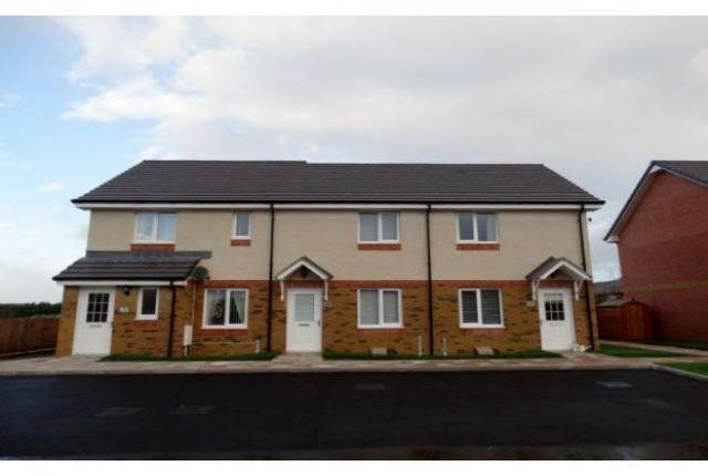 Thumbnail Terraced house to rent in Sandypoint Road, Dumfries