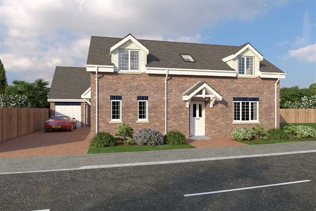 Thumbnail Detached bungalow for sale in Glanfryn Court, Heol Cwmmawr, Drefach, Nr Cross Hands
