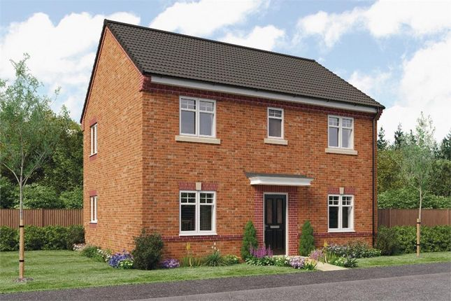 "Thumbnail Detached house for sale in ""Buchan Da"" at Croston Road, Farington Moss, Leyland"